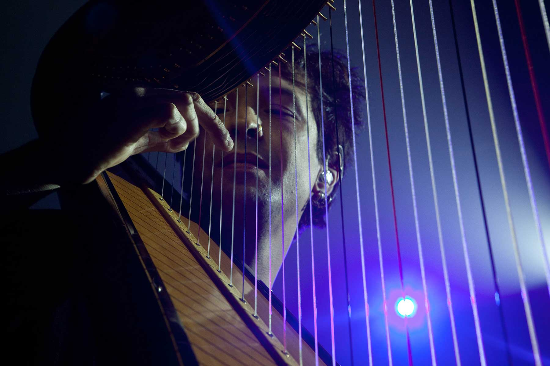 Tom - Our Harpist